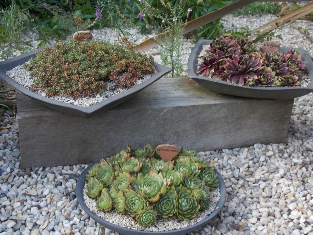 vasque de jardin