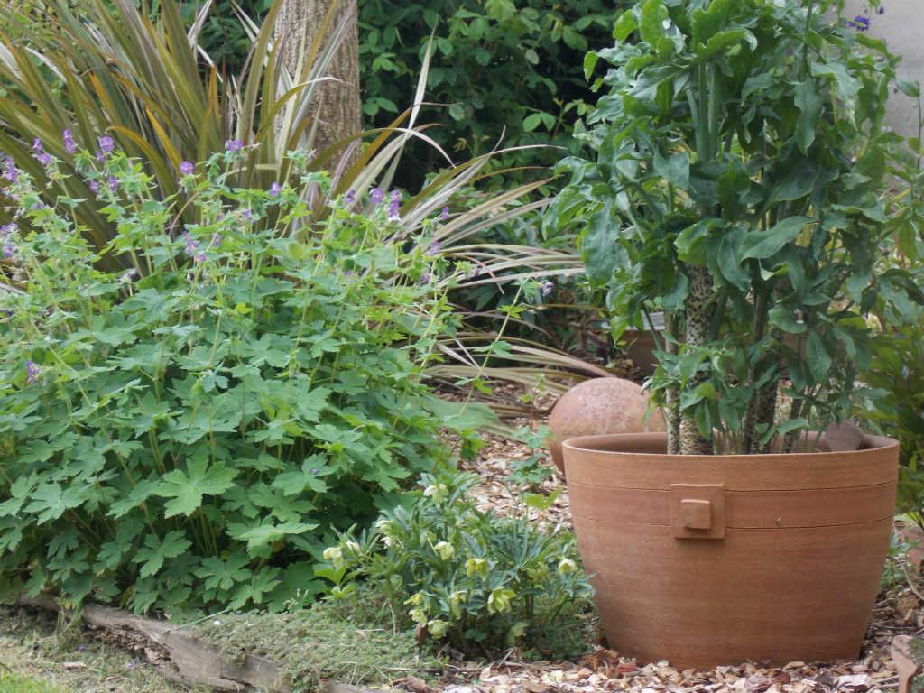 pot de jardin en grès